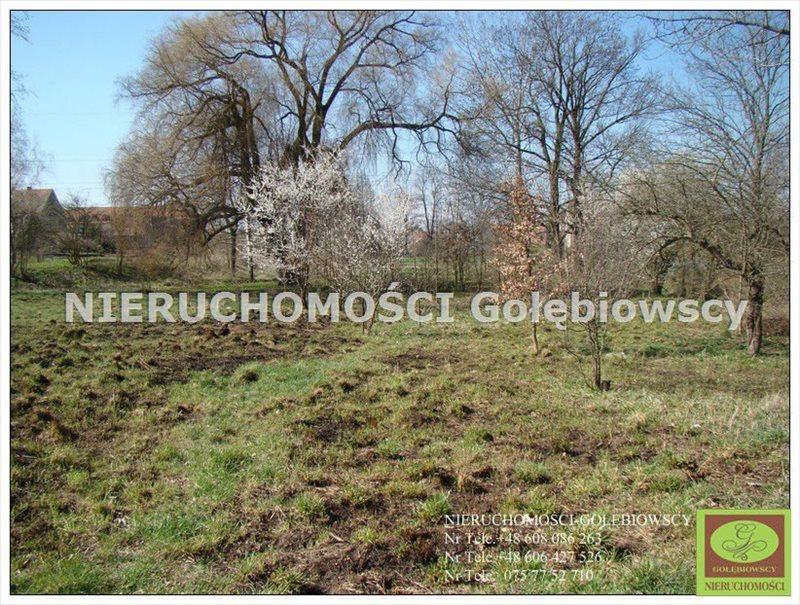 Działka inna na sprzedaż Jędrzychowice  3952m2 Foto 5