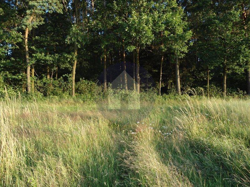 Działka rolna na sprzedaż Jaroszówka  14800m2 Foto 3