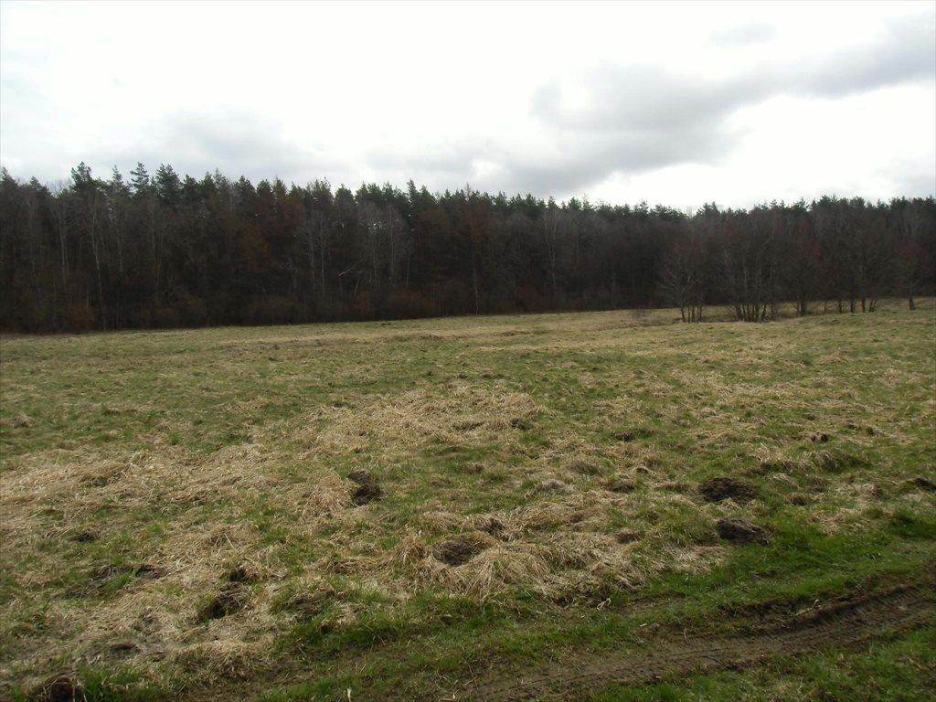 Działka rolna na sprzedaż Tawęcino  136800m2 Foto 2