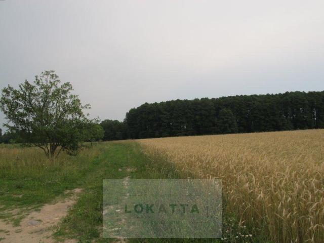 Działka rolna na sprzedaż Nowe Wrońska, Płońsk - Załuski  3800m2 Foto 1
