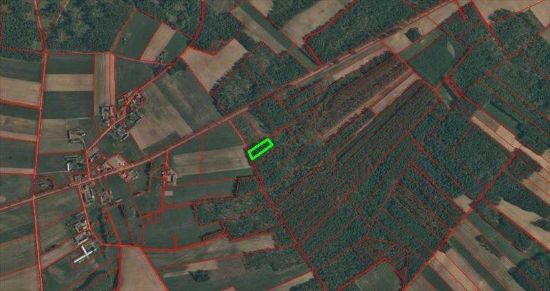Działka leśna na sprzedaż Rydzewo-Świątki  3600m2 Foto 4