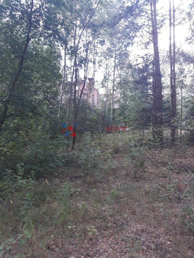 Działka leśna z prawem budowy na sprzedaż Jeziórko  1070m2 Foto 5