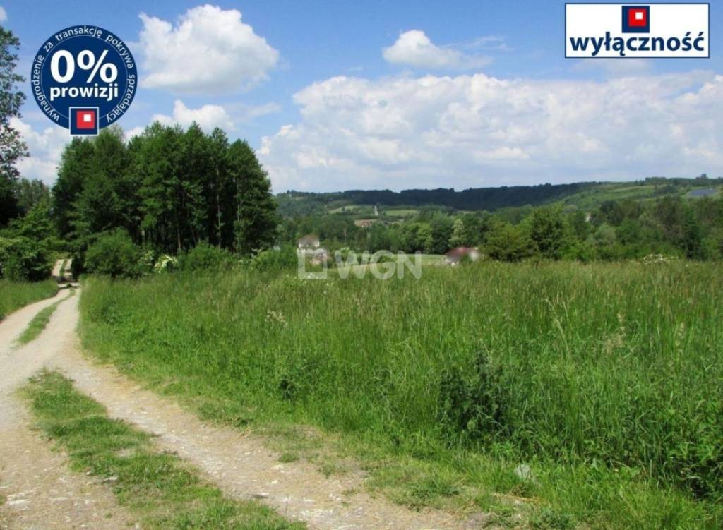 Działka budowlana na sprzedaż Nowy Borek, Nowy Borek, Nowy Borek  7836m2 Foto 1