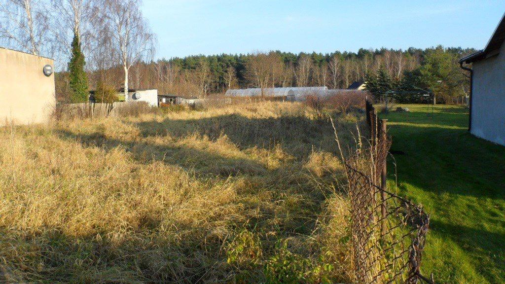 Działka budowlana na sprzedaż Dębogórze Wybudowanie, Prywatna  1600m2 Foto 2