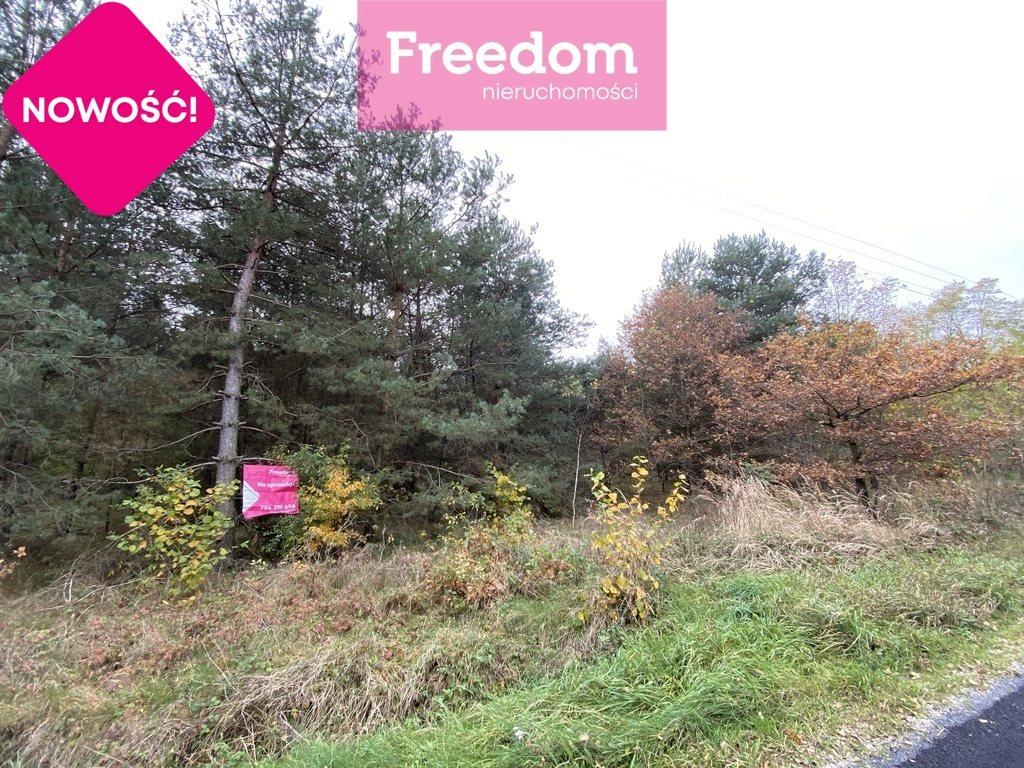 Działka leśna na sprzedaż Patok  16806m2 Foto 3