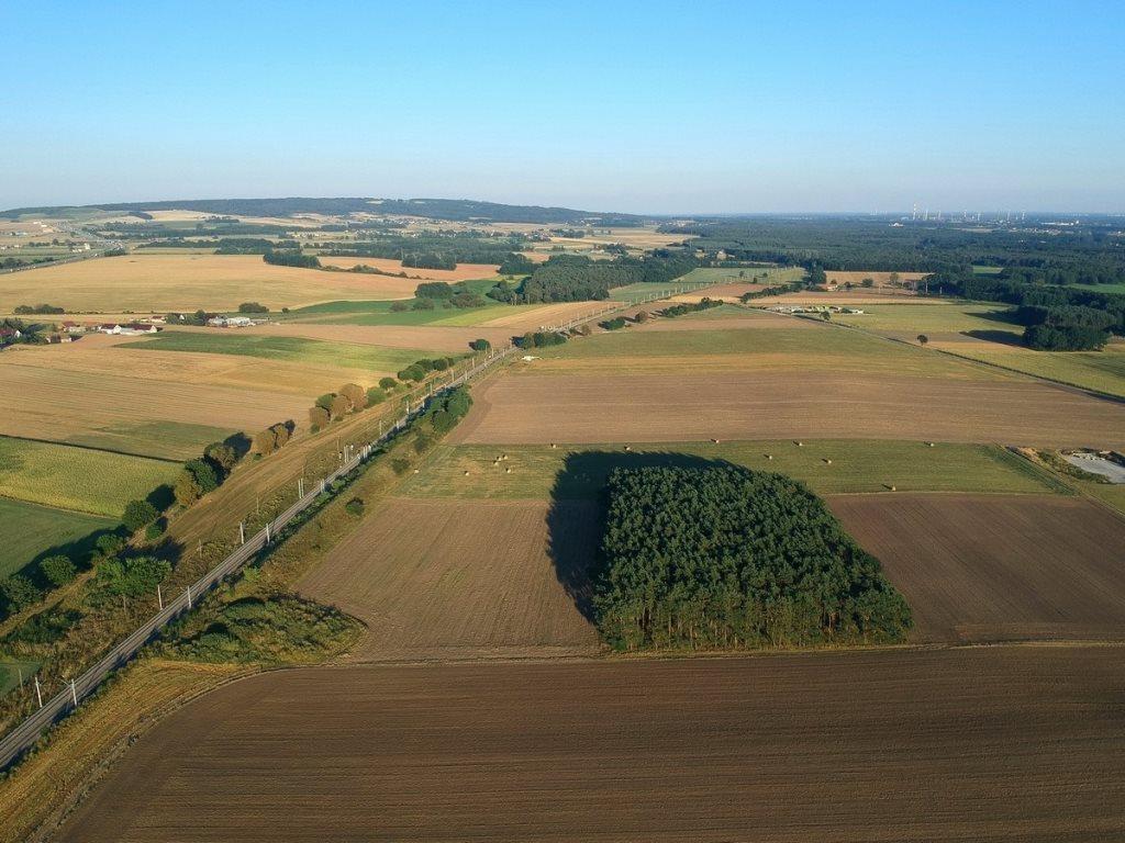 Działka leśna na sprzedaż Gogolin, Wygoda  25540m2 Foto 2