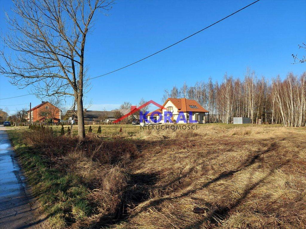 Działka budowlana na sprzedaż Skrzypiów, Skrzypiów - Pińczów  9700m2 Foto 7