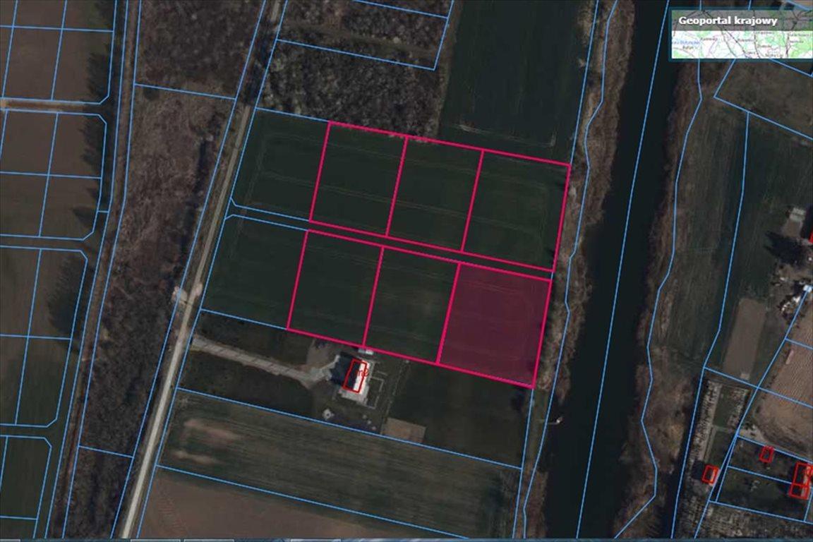 Działka rolna na sprzedaż Drewnica, Stegna  3834m2 Foto 2