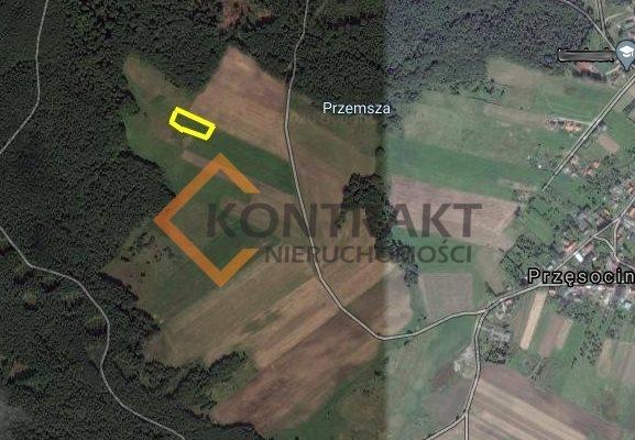 Działka rolna na sprzedaż Przęsocin  3005m2 Foto 3