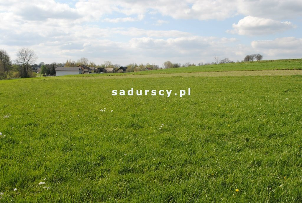 Działka rolna na sprzedaż Ściborzyce  34334m2 Foto 4