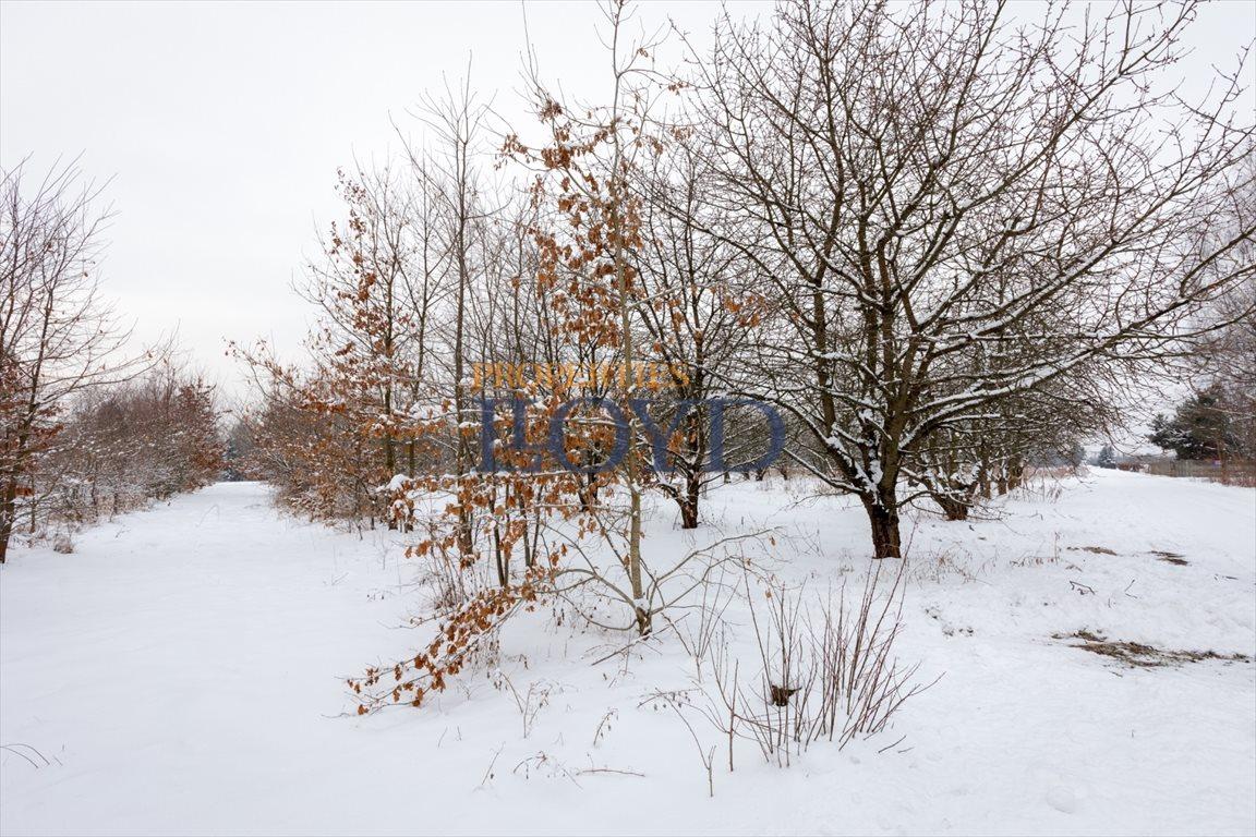 Działka rolna na sprzedaż Kruszew, kruszew  15000m2 Foto 4