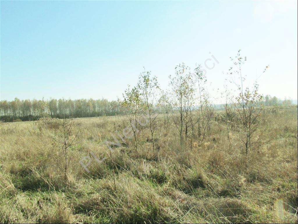 Działka rolna na sprzedaż Tyborów  30000m2 Foto 2