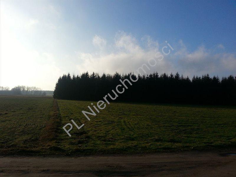 Działka rolna na sprzedaż Zdzieszyn  7700m2 Foto 3
