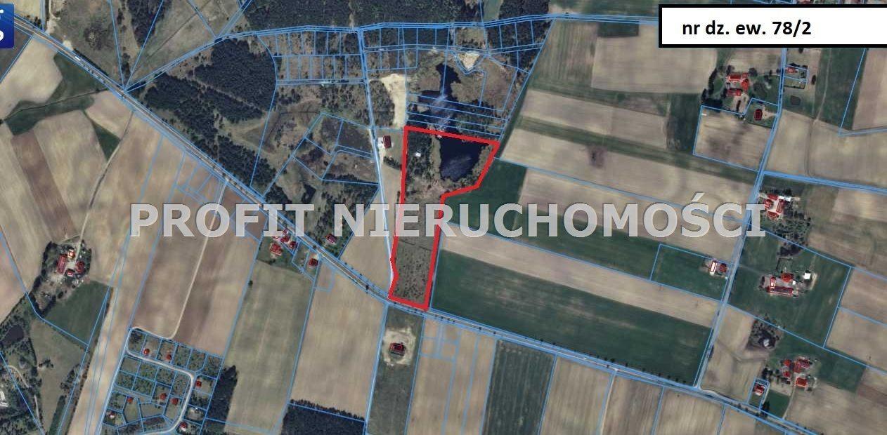 Działka leśna na sprzedaż Linia  77931m2 Foto 5