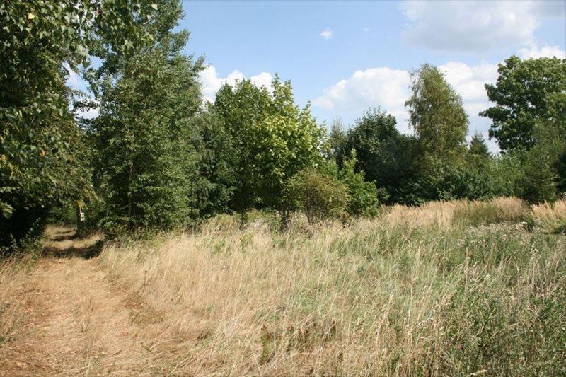 Działka budowlana na sprzedaż Świeradów-Zdrój, Czerniawa  1627m2 Foto 1