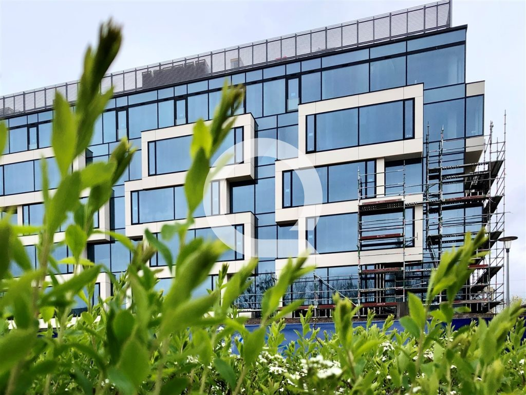 Lokal użytkowy na sprzedaż Gdynia, Śródmieście, Centrum  600m2 Foto 3