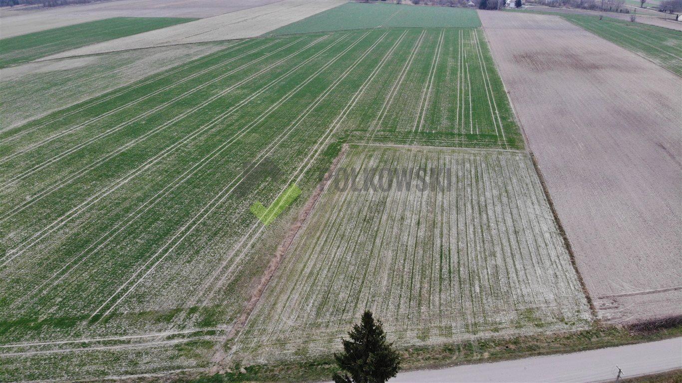Działka rolna na sprzedaż Strzeszewo  3000m2 Foto 1