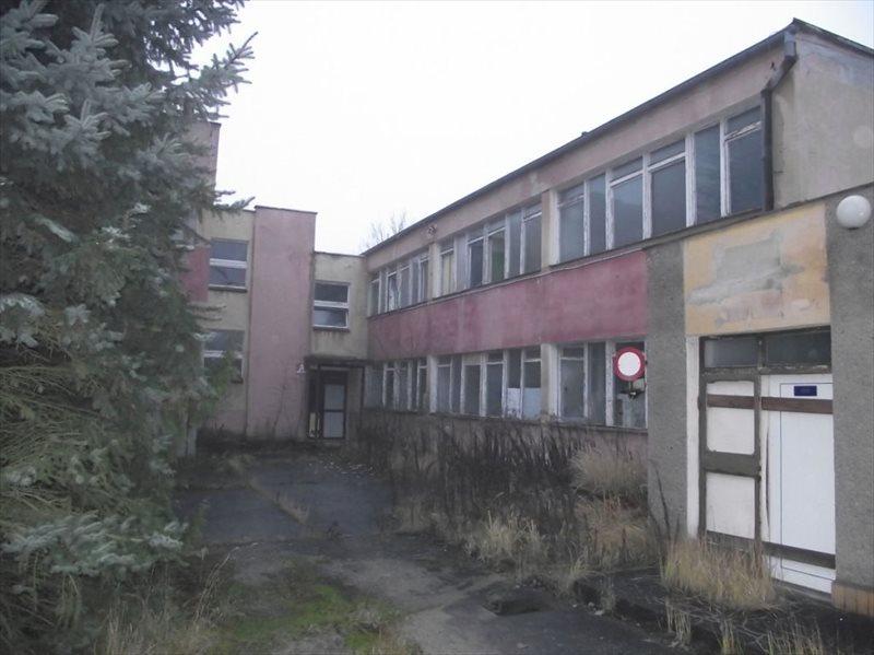 Lokal użytkowy na sprzedaż Nowogród Bobrzański  600m2 Foto 3