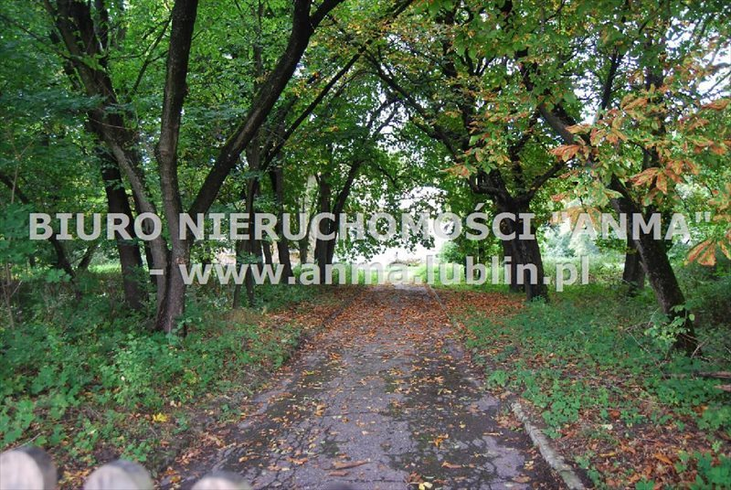 Dom na sprzedaż Terespol  650m2 Foto 7
