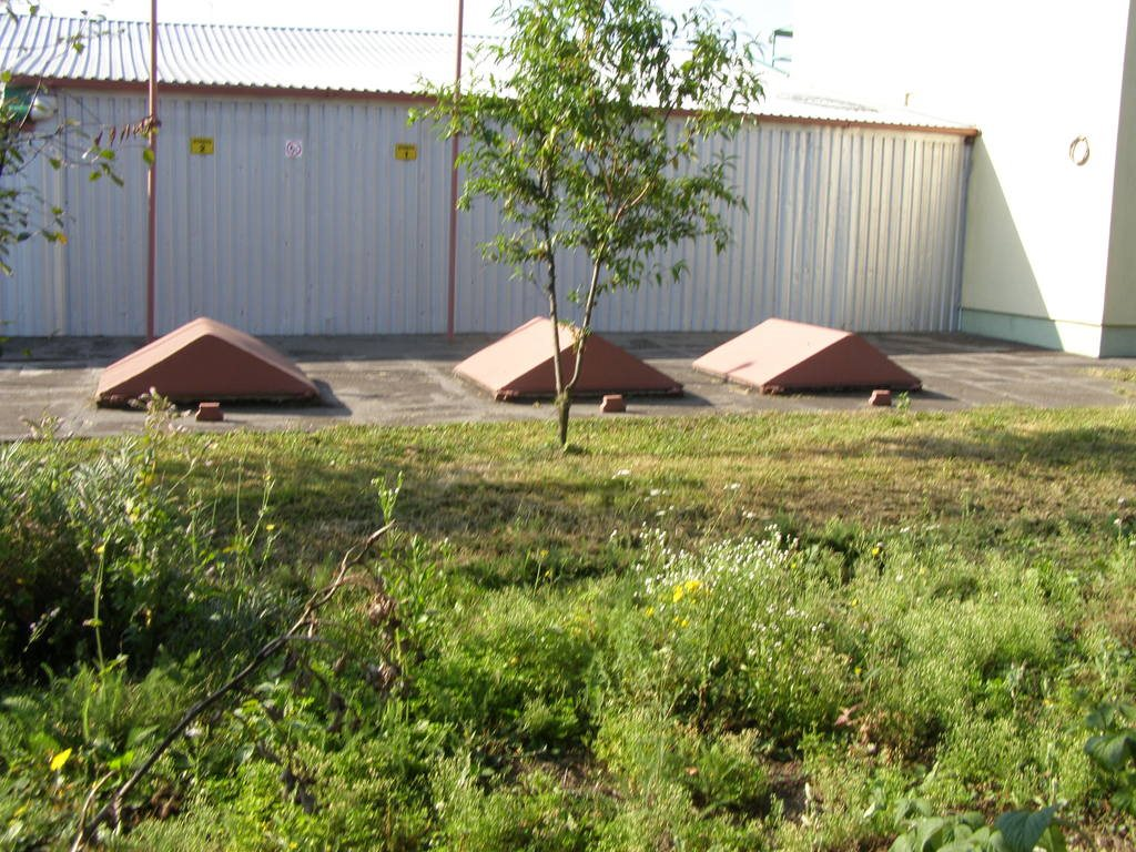 Lokal użytkowy na sprzedaż Orły  815m2 Foto 11