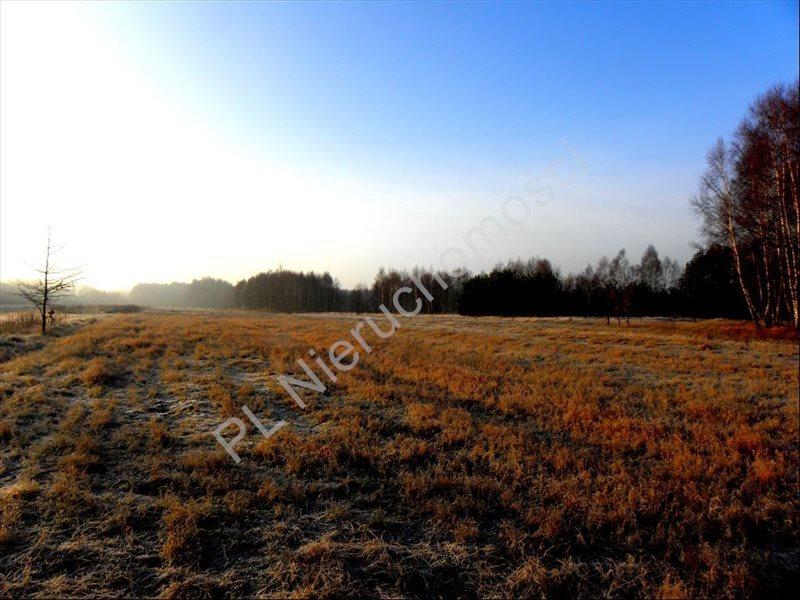 Działka rolna na sprzedaż Stanisławów  12000m2 Foto 1