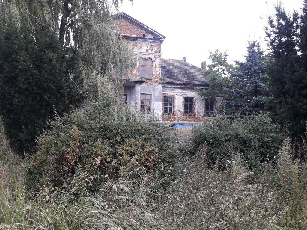 Dom na sprzedaż Bosowice  1500m2 Foto 11