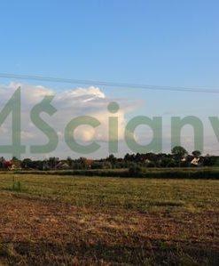 Działka siedliskowa na sprzedaż Duchnów  1229m2 Foto 3