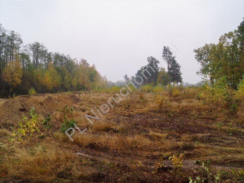 Działka rolna na sprzedaż Makówka  1500m2 Foto 2