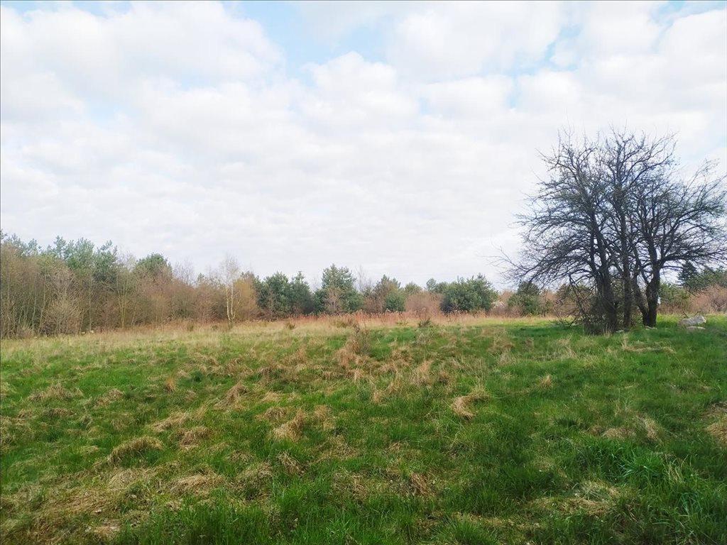 Działka rolna na sprzedaż Rościsławice, Oborniki Śląskie  15861m2 Foto 10