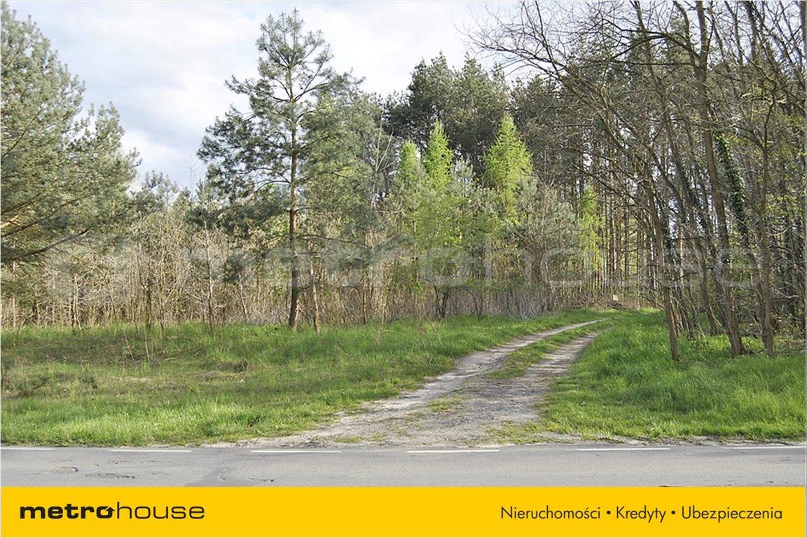Działka rolna na sprzedaż Wały, Brzeg Dolny  5510m2 Foto 6