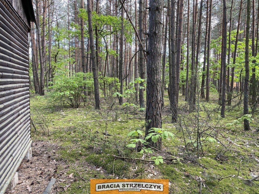 Działka leśna na sprzedaż Wólka Mlęcka  2800m2 Foto 2