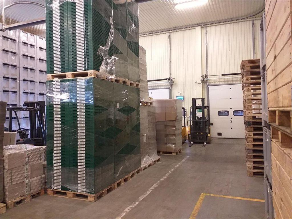 Lokal użytkowy na sprzedaż Wsola  1800m2 Foto 4