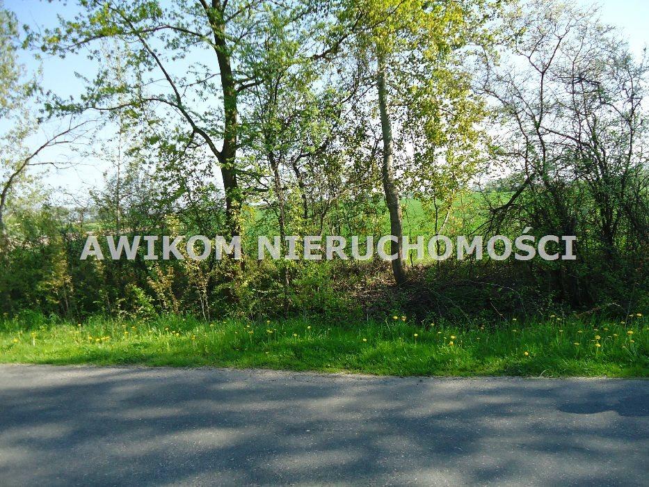 Działka budowlana na sprzedaż Bronisławów  1171m2 Foto 3