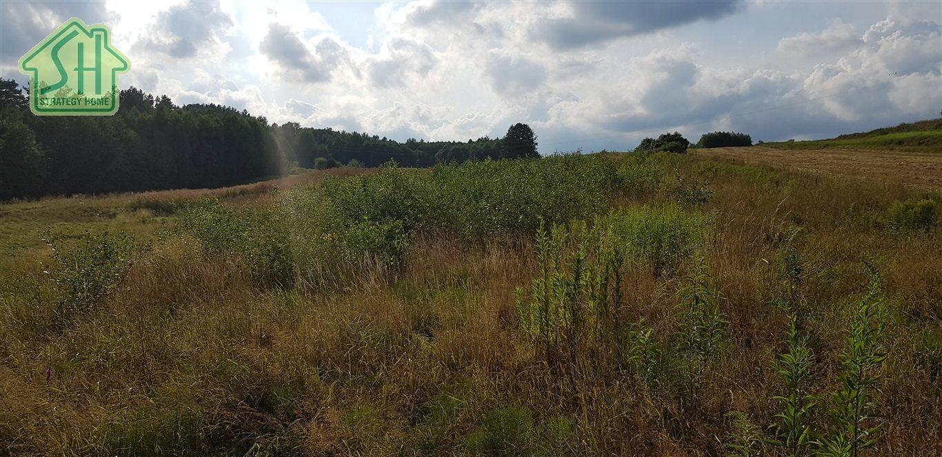 Działka rolna na sprzedaż Nienadowa  10334m2 Foto 3