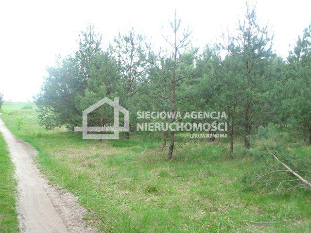 Działka siedliskowa na sprzedaż Miedzno  4564m2 Foto 3