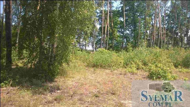 Działka leśna na sprzedaż Góra Kalwaria, Ługówka, Leśna  10488m2 Foto 9