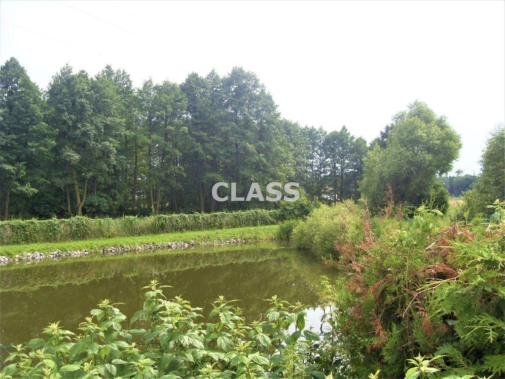 Dom na sprzedaż Przyłęki  220m2 Foto 7