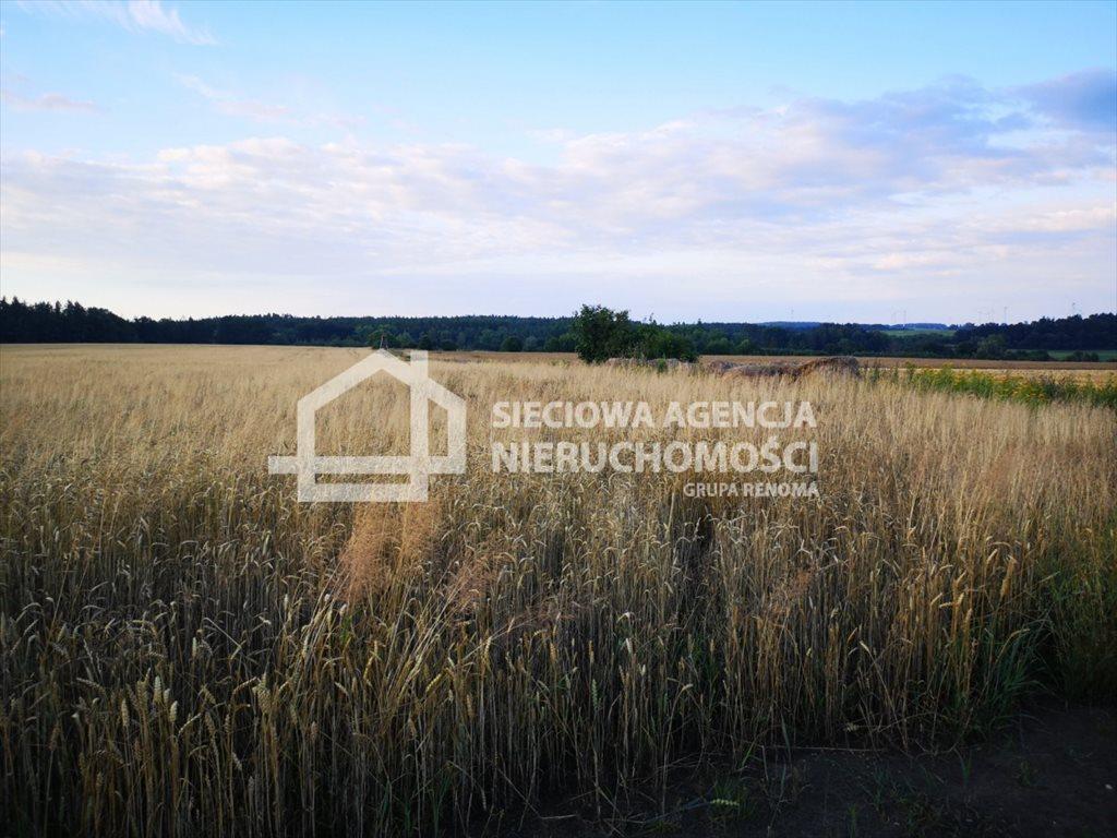 Działka rolna na sprzedaż Białogarda  148300m2 Foto 10