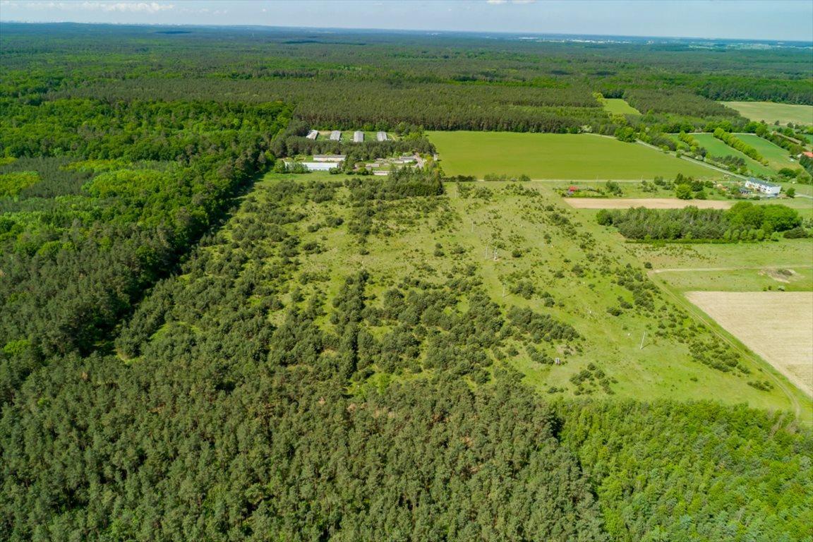 Działka przemysłowo-handlowa na sprzedaż Dąbrówka Kościelna  2527m2 Foto 3