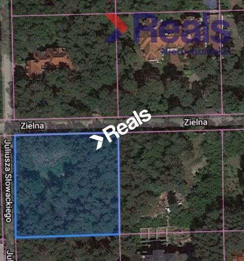 Działka leśna z prawem budowy na sprzedaż Konstancin-Jeziorna  3252m2 Foto 2