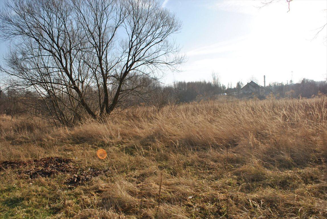 Działka budowlana na sprzedaż Mysłowice, Brzezinka  6000m2 Foto 1