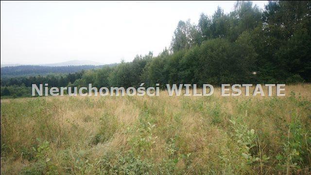 Działka rolna na sprzedaż Lesko, Huzele  88812m2 Foto 12