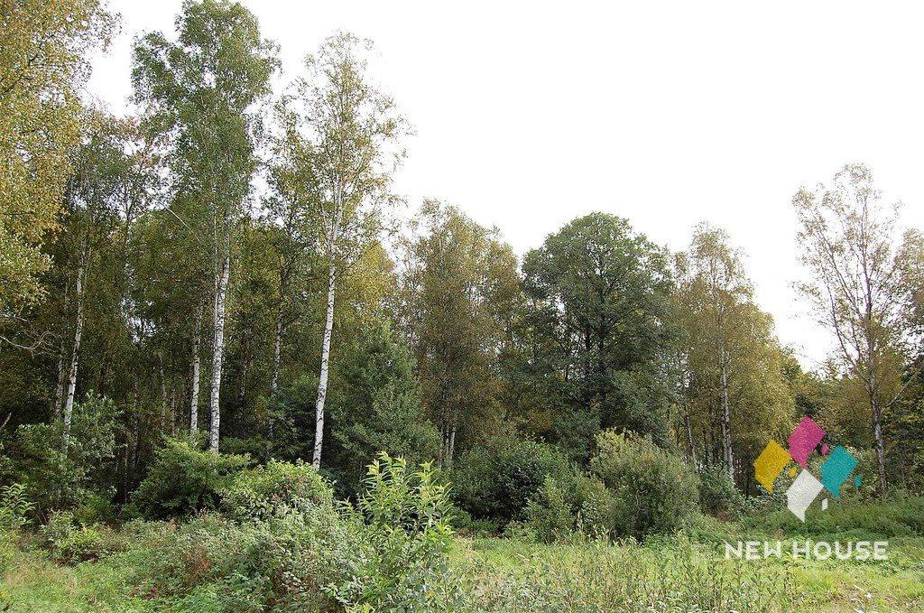 Działka rolna na sprzedaż Przykop  5100m2 Foto 6