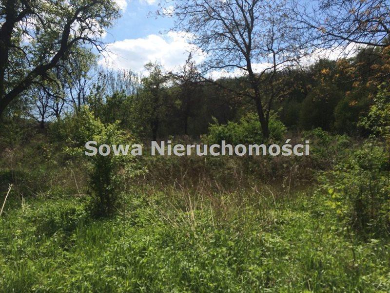 Działka inna na sprzedaż Świebodzice, Pełcznica  13000m2 Foto 3