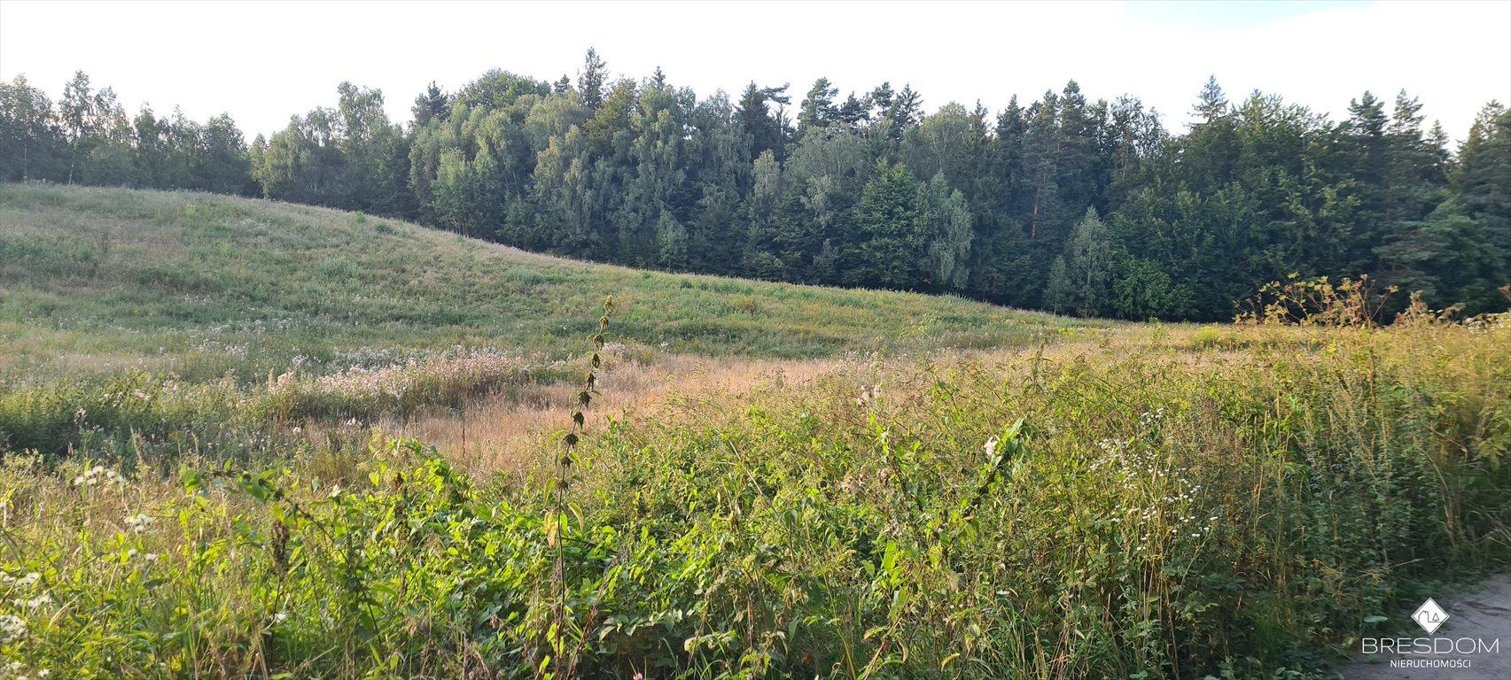 Działka rolna na sprzedaż Cerkiewnik  8467m2 Foto 4