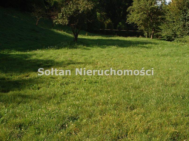 Działka inna na sprzedaż Kazimierz Dolny  10887m2 Foto 7