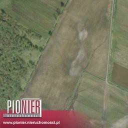 Działka rolna na sprzedaż Daleszewo  34800m2 Foto 4