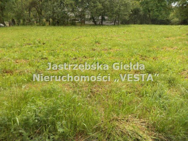 Działka budowlana na sprzedaż Jastrzębie-Zdrój  1188m2 Foto 3