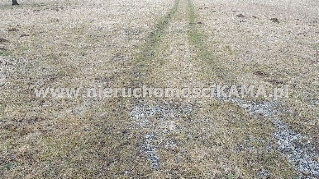Działka inna pod dzierżawę Buczkowice  5000m2 Foto 1