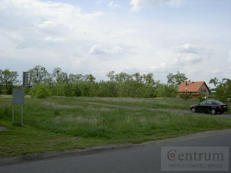 Działka budowlana na sprzedaż Narok, Wiejska  12420m2 Foto 12